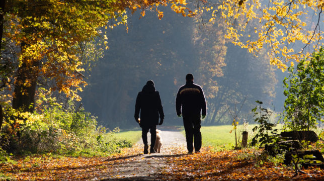 people walking with a dog